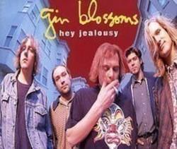 Gin Blossoms Until I Fall Away